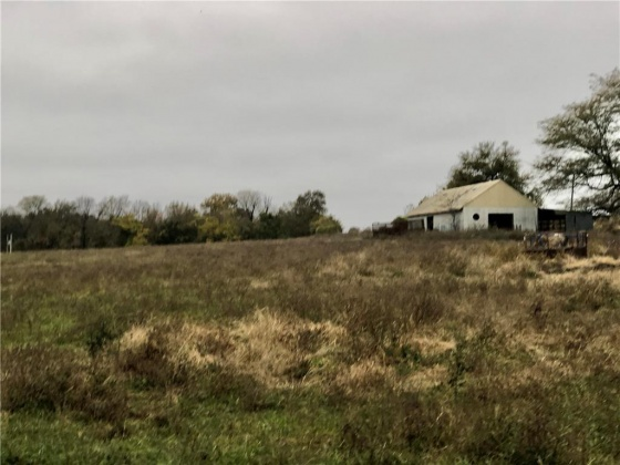 MAYES, Missouri 64085, ,For Sale,MAYES,2196323