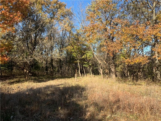 Lot 4 175th, Kansas 66221, ,For Sale,175th,2197046